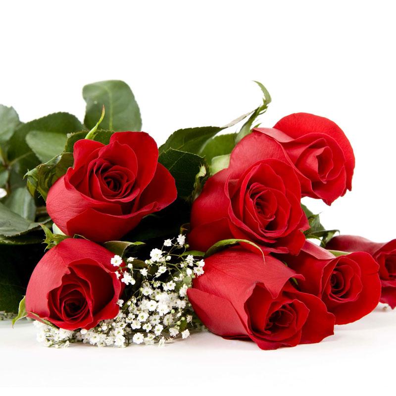 Spedire mazzo di 7 rose rosse particolare