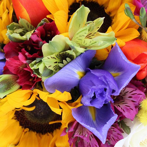 Spedire particolare bouquet colorato con mimosa