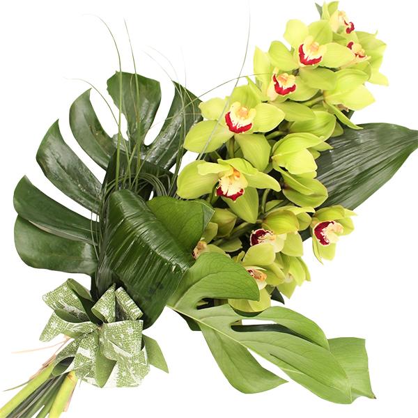 Spedire ramo_orchidea