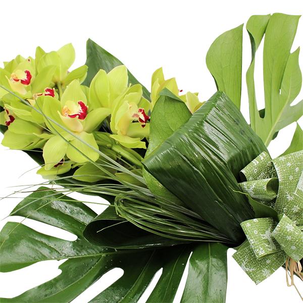 Spedire ramo_orchidea_3