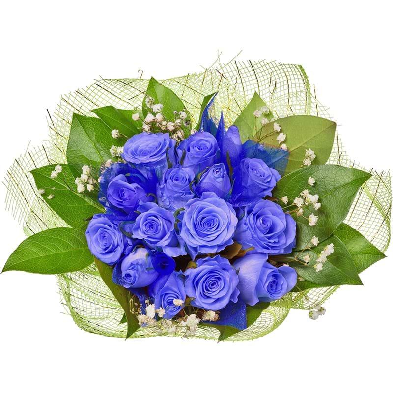 Spedire rose blu vista alto