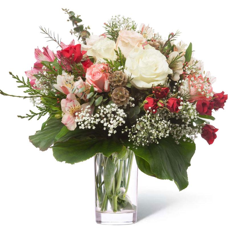 Spedire rose a domicilio in vaso