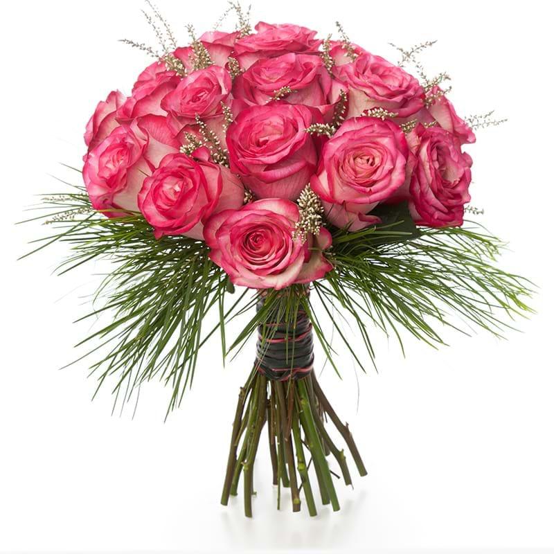 Spedire rose fuxia