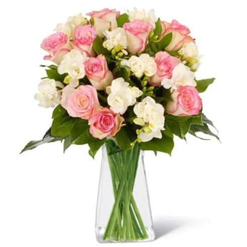 Spedire rose rosa e fresie in vaso
