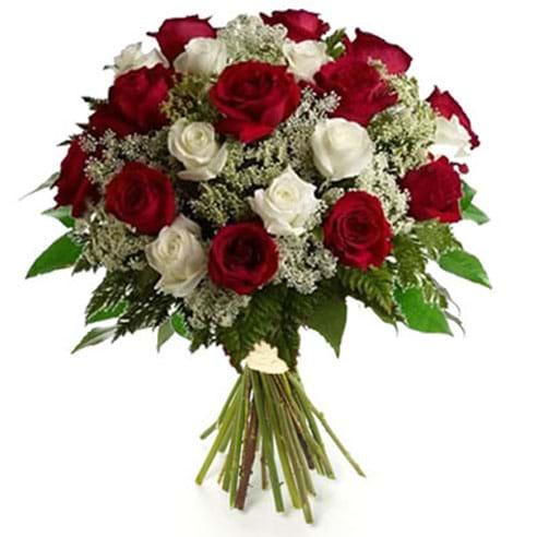 Spedire rose rosse e bianche