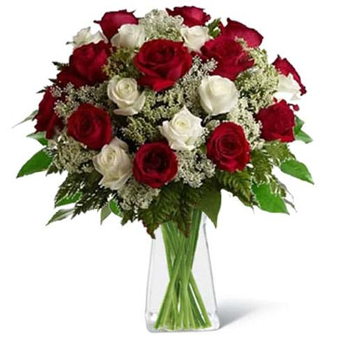 Spedire rose rosse e bianche in vaso
