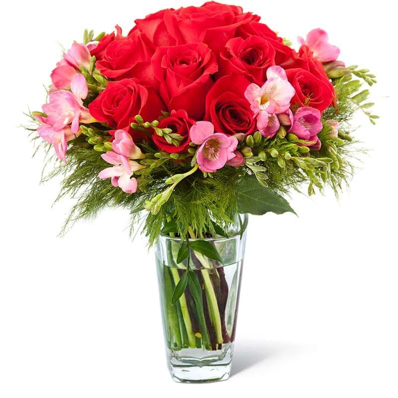 Spedire rose rosse e fresie in vaso