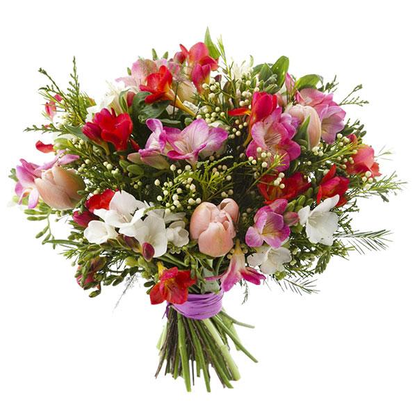 Spedire tulipanie astromerie