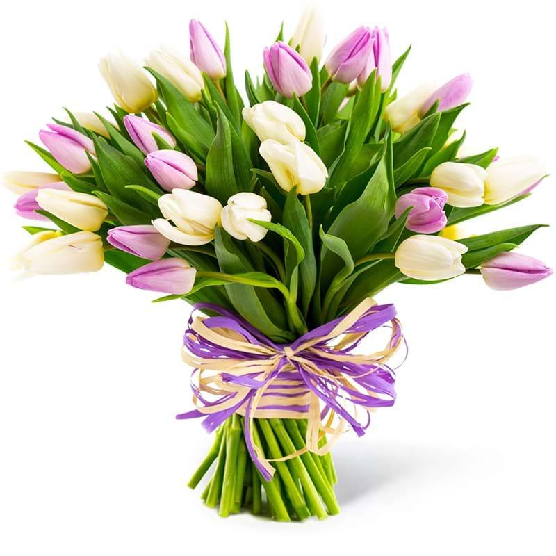 Spedire tulipani bianchi e rosa
