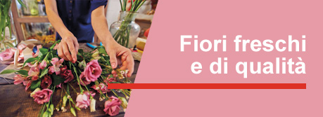 Rose Rosse e Fresie a domicilio in 2 ore