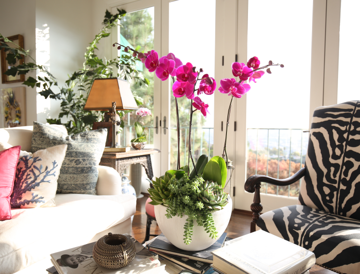 Arredare casa con fiori e piante - Arredare casa on line gratis ...