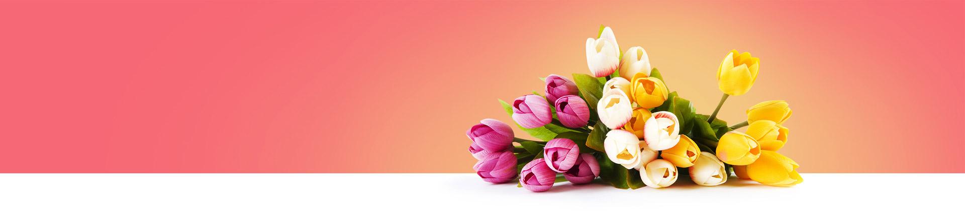 Regala Piante fiorite